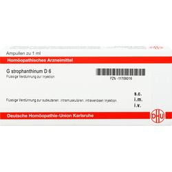 G STROPHANTHINUM D 6 Ampullen 8 ml