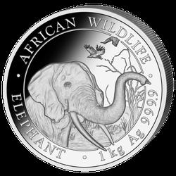 1 kg Silber Somalia Elefant 2018