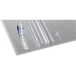 GUTTA Doppelstegplatte GUTTGLISS, 10 mm, (Set)