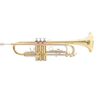 Roy Benson TR-202 B-Trompete
