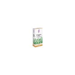 HIRTENTÄSCHELKRAUT Tee 60 g