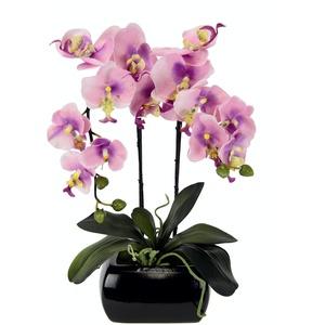 Kunstblume Schmetterling Orchidee mit Blätter und Luftwurzeln in Schale aus Keramik Künstliche Blume Kunstorchidee Phalaenopsis mit Übertopf Kunstpflanze Hochzeit Deko Seidenblume Real Touch Blüte
