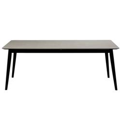 ebuy24 Esstisch Danform Passo Esstisch Keramik Tischplatte, 100x20
