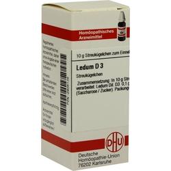 LEDUM D 3