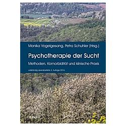 Psychotherapie der Sucht - Buch
