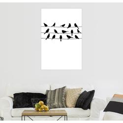 Posterlounge Wandbild, Vogelgezwitscher 61 cm x 91 cm