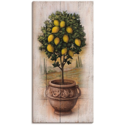 Artland Wandbild Zitronenbaum mit Holzoptik, Bäume (1 Stück) 30 cm x 60 cm x 1,8 cm