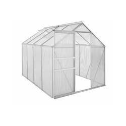 Aluminium Gewächshaus 250 x 190 cm, 6 mm Platten, 4,75m² - Zelsius