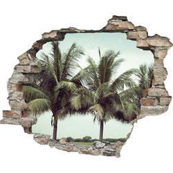 Wandtattoo »Palmen« (1 Stück), Wandtattoos, 56975237-0 grün 60x0,1x50 cm grün