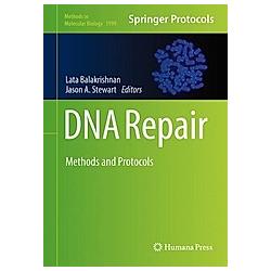 DNA Repair - Buch