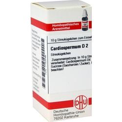 CARDIOSPERMUM D 2