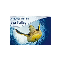 A Journey With the Sea Turtles (Wall Calendar 2021 DIN A3 Landscape)