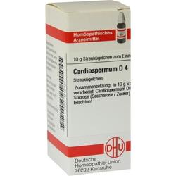 CARDIOSPERMUM D 4