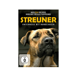 Streuner - Unterwegs mit Hundeaugen DVD