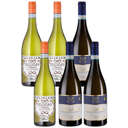 6er-Probierpaket Lugana - Weinpakete