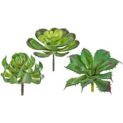 Kunstpflanze Sukkulenten Sukkulente, Creativ green, Höhe 11 cm, 6er Set