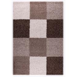 Teppich Shaggy Basic 171 (Braun; 160 x 230 cm)