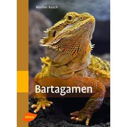 Bartagamen: eBook von Marlies Busch