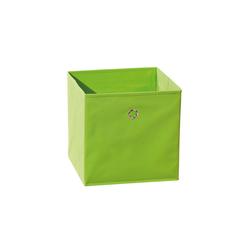 ebuy24 Aufbewahrungsbox Wase Aufbewahrungsbox apfelgrün.