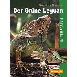 Der Grüne Leguan im Terrarium als Buch von Gunther Köhler