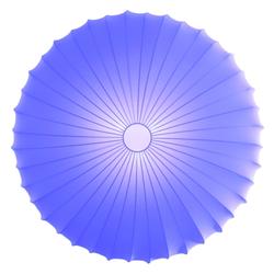 PL Muse 60 Blume