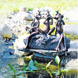 Heissner Wasserspeier Froschkapelle