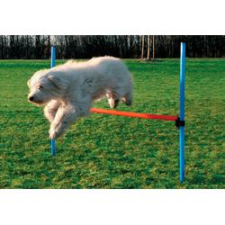 Heim Hunde-Hürde Dog Agility Hürde blau