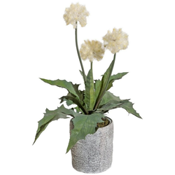 Kunstpflanze Distelbusch, Creativ green, Höhe 40 cm, im Zementtopf