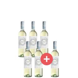 5+1 Paket Lugana Weinlakai Empfehlung - Weinpakete