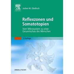 Reflexzonen und Somatotopien als Buch von Jochen M. Gleditsch