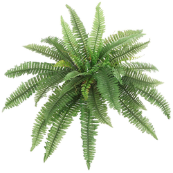 Kunstpflanze Boston Farn Farn, Creativ green, Höhe 45 cm, im Tontopf