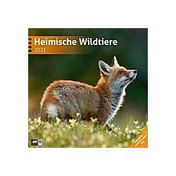Heimische Wildtiere 2021