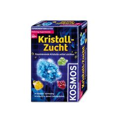 Experimentierkasten - Mitbring-Experimente: Kristall-Zucht