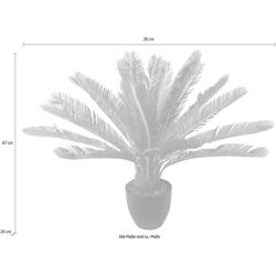 Kunstpflanze Cycaspalme im Topf Cycaspalme, I.GE.A., Höhe 67 cm