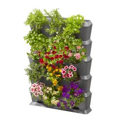 NatureUp! Set Vertikal mit Bewässerung | 13151-20