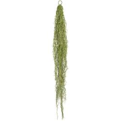 Kunstranke Tillandsienhänger Sukkulente, Creativ green, Höhe 140 cm