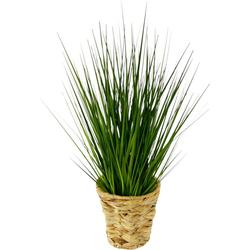 Kunstpflanze Gras, I.GE.A., Höhe 60 cm