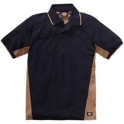 Dickies Poloshirt 100 % Baumwolle schwarz L