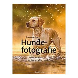 Hundefotografie. Anna Auerbach  - Buch