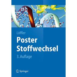 Poster Stoffwechsel