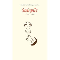 Steinpilz als Buch von Inge Fasan