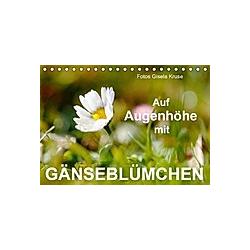 Auf Augenhöhe mit Gänseblümchen (Tischkalender 2021 DIN A5 quer)
