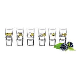 Sendez Schnapsglas 6 Schnapsgläser Tequilagläser mit Sprüchen Gläser Schnaps Shots Stamper Wodkagläser