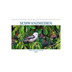 Schwanzmeisen (Wandkalender 2021 DIN A4 quer) - Kalender
