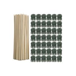 Gotui Pflanzentreppe Pflanzenclip, Pflanzenclip+Pflanze Wachstum Stock