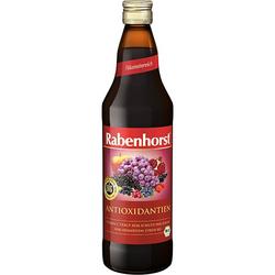 RABENHORST Antioxidantien Bio Saft 700 ml