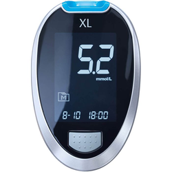 GLUCO CHECK XL Blutzuckermessgerät Set mmol/l 1 St.