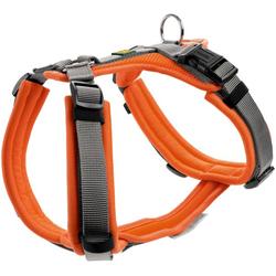 Geschirr Maldon orange/grau S-M
