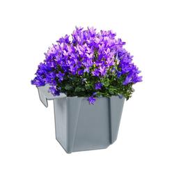 BigDean Blumenkasten Pflanzkasten Palette Grau Mini 9,5 x 14,5 x 9 cm Kunststoff Paletten Pflanzkübel Palettenkasten Palettenpflanzkasten