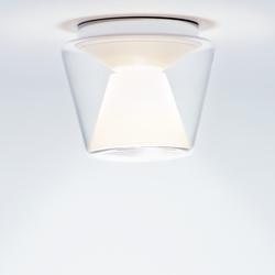 Annex Ceiling LED M - klar / opal